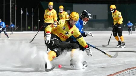 Эпизод матча по хоккею с мячом
